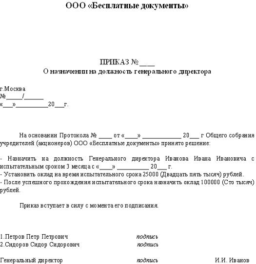Решение о назначении директора ооо